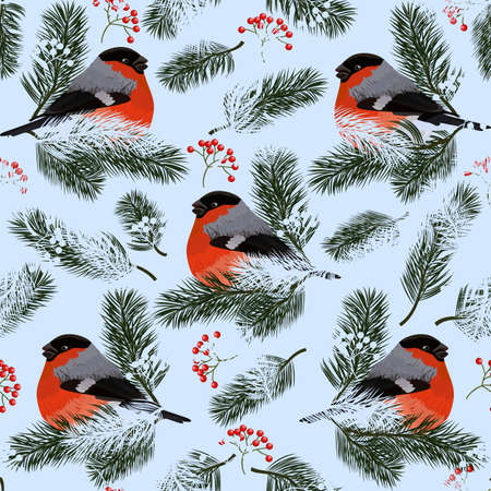 Seamless pattern with bullfinches, rowan berries and fir branches. Vector illustration on blue background