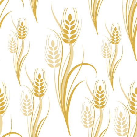 Seamless pattern with yellow wheat spikelets on a white isolated background. Vector illustration Imagens - 134629647