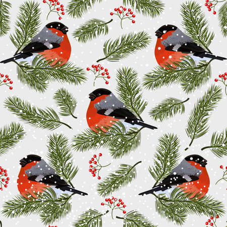 Seamless pattern with bullfinches, rowan berries and fir branches. Vector illustration on white background. Ilustração