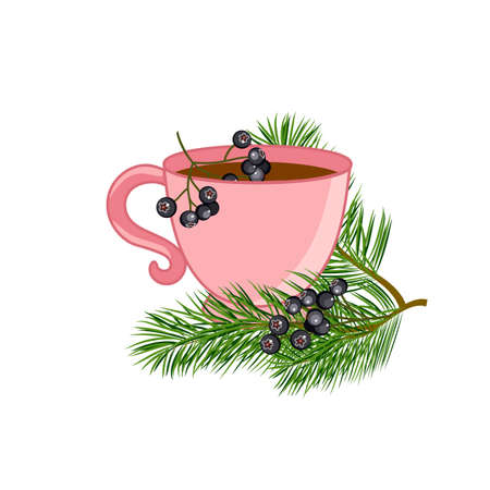A cup of tea with pine branches and black rowan. Vector illustration.