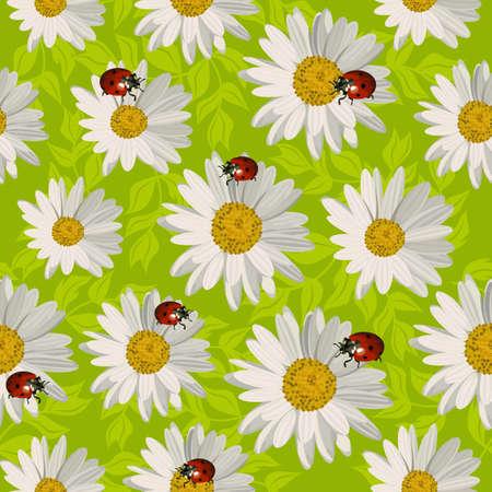 Seamless pattern with daisy flowers and ladybugs. Ilustracja
