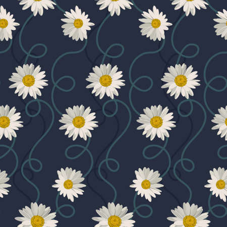 Seamless pattern with white daisies on blue background. Vector illustration Ilustrace