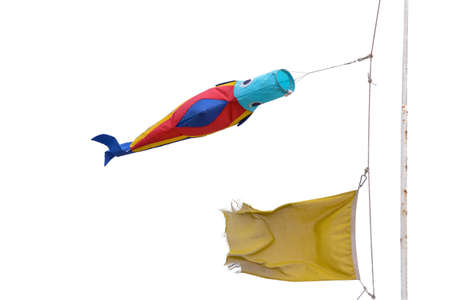 a fish-shaped kite waving to the wind, attached to the auction of a flag