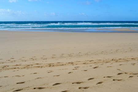 fuerteventura weißer strand
