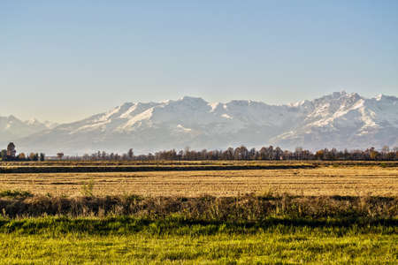 landscape of the Italian countryside of the Po valley, Novara and Vercelli with the background of the mountain range of the Alps Banque d'images - 97018347
