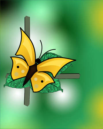 Nice yellow butterfly on green, yellow background photo