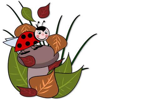 A little ladybird on a brown mushroom