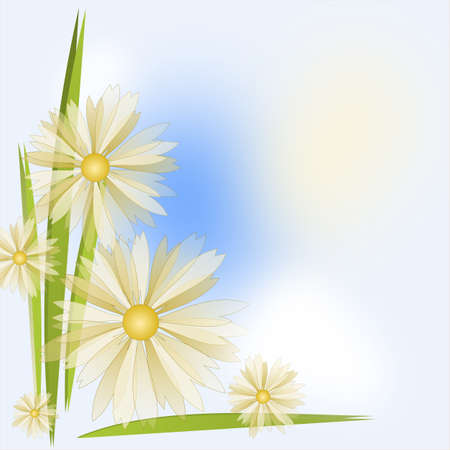 Flower Background in white, blue and yellow colours Stock Photo - 14390015