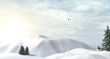 wintertime: Deer in snowy wintertime
