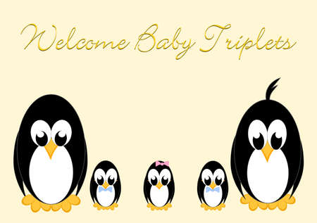 Welcome Baby Penguins - triples 1 girls and 2 boy