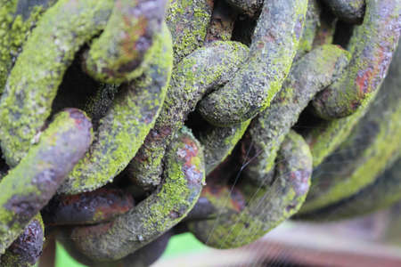 furled: closeup of old metal chain, colorful with moss and rust and a spiderweb