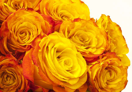 pink and yellow roses bouquet Stock Photo