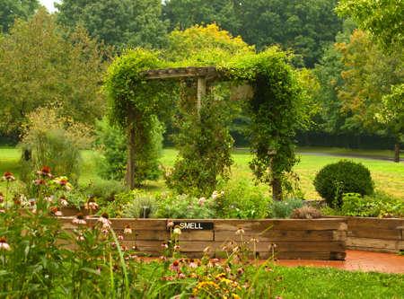 giardino utilizzato per la formazione vegetale