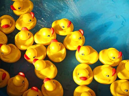 子供用プールにゴム製のアヒル 写真素材