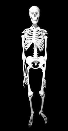 skeleton hand: human skeleton on black background