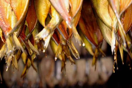 kipper: Kipper tails