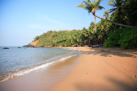 rigger: Typical beach in Goa India