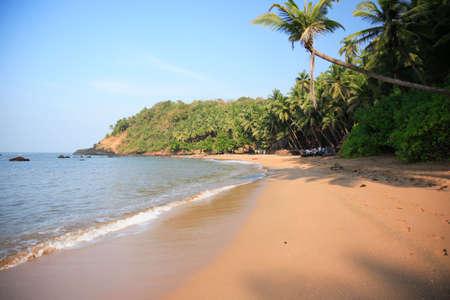 Typical beach in Goa India
