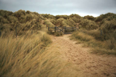 natural moody: Path throught the sand dunes on Bamburgh beach Northumberland Stock Photo