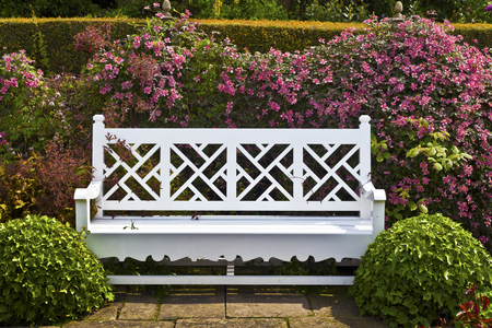 Wooden garden bench with topiary shrubs and pink clematis