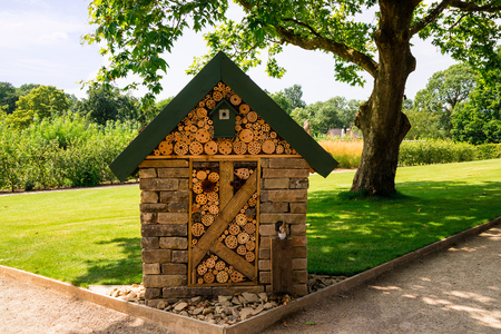 Insect hotel is providing shelter for variety of insects.