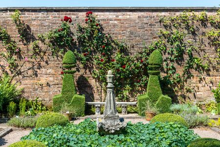 Small topiary garden with espaliered roses against brick wall.