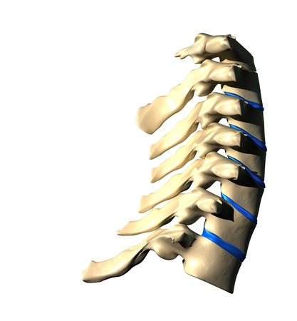 Cervical Spine - Lateral view   Side view photo
