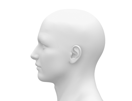 artists mannequin: Male Head Face - Side view