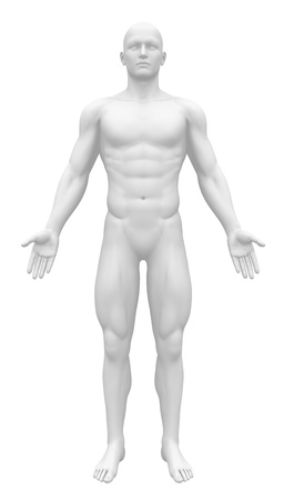 figurine: Blank Anatomy Figure - Front view Stock Photo