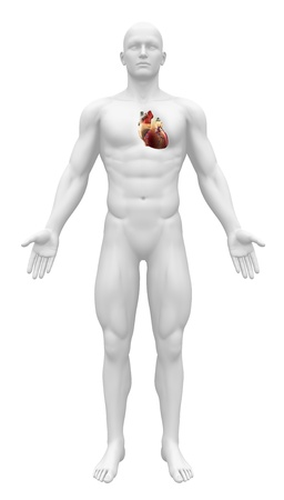 3d image: Man figure with heart