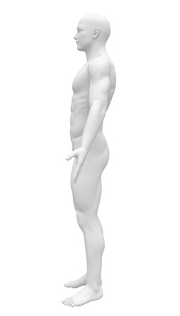 artists mannequin: Blank Anatomy Figure - Side view