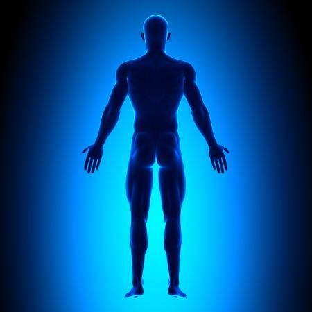 Retour Man Figure Poste médical Banque d'images - 20869667