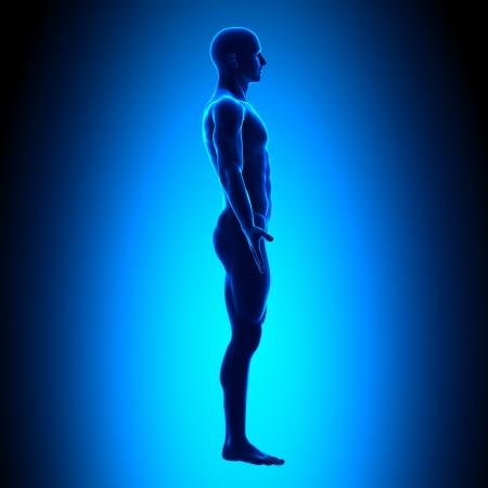 human figure: Side Man Figure Medical Position