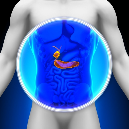 Medical X-ray Scan Pancreas Gallbladder photo