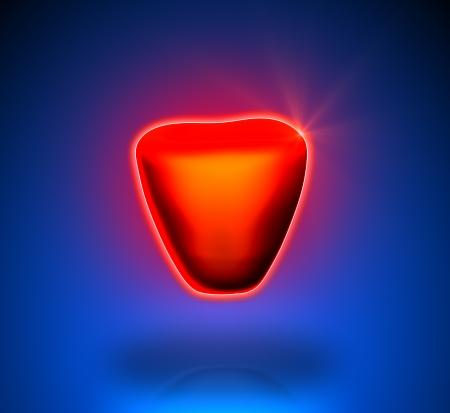 Prostate - Internal organs - blue background Zdjęcie Seryjne