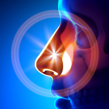nose: Influenza Freddo - Naso completa