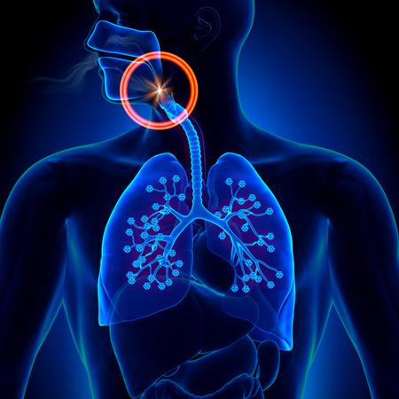 durmiendo: Apnea - Obstrucci�n de apnea del sue�o Foto de archivo