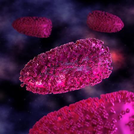 microcosmic: Rabies Cell - in fluid
