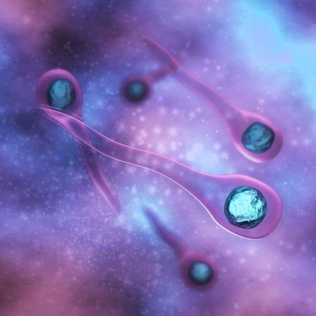 流体中の破傷風菌 写真素材