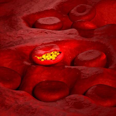 Malaria Virus Cell - 3D illustration illustration