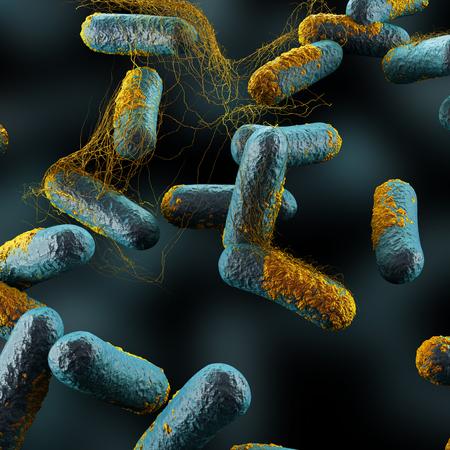Clostridium perfringens Bakterier Stockfoto