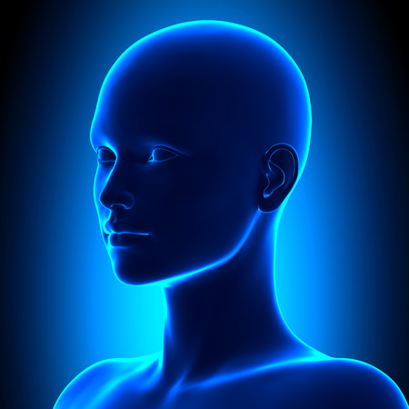 Izometrický ženské hlavy Anatomie