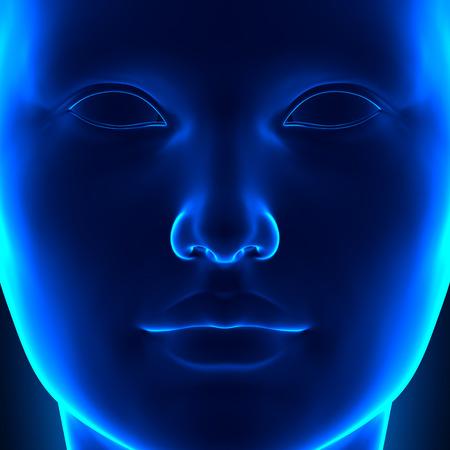 cabeza femenina: Frente Femenino Anatom�a Cabeza Cara