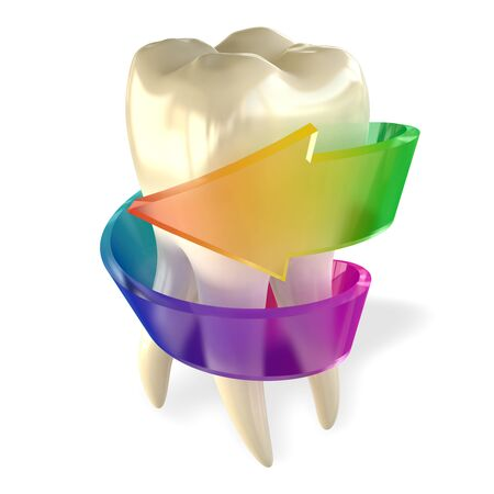 Tooth Molar Healthy isolated on white Stock Photo