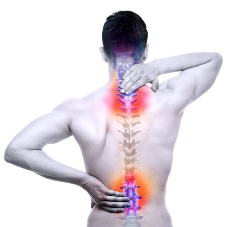 adult bones: SPINE Pain - Male Hurt Backbone isolated on white - REAL Anatomy concept Stock Photo