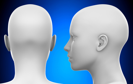 Blank White Female Head - Side and Back view 3D illustration