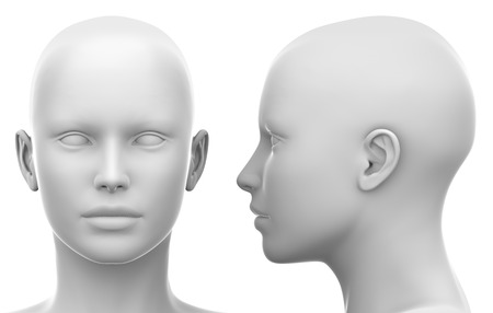 Blank White Female Head - Side and Front view