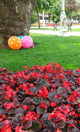 rejections: colorful balloons and flowers in the landscape in the park, tree trunk Stock Photo
