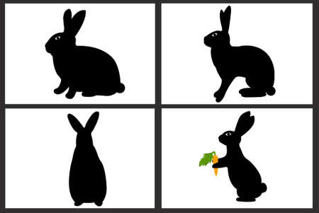 bunny rabbit: Conejo de Pascua collages aislado en blanco Vectores