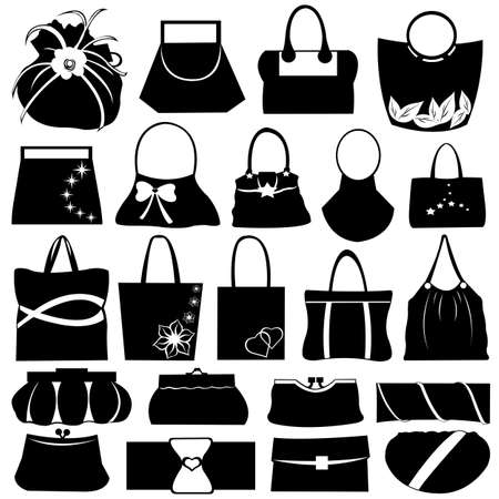 carry bag: Female purse set isolated on white Illustration
